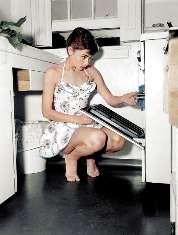 Audrey-Hepburn-dana-keller