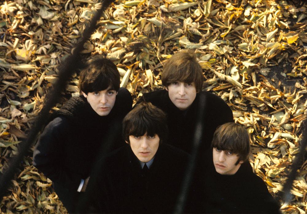 BeatlesLeaves