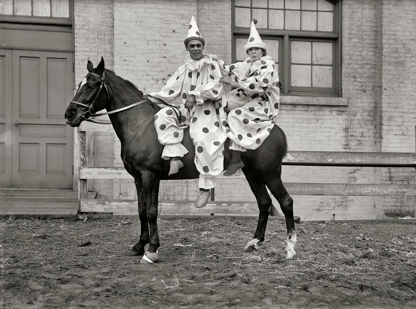 ClownsOnHorseBaja