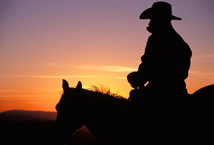 CowboyHorseSilhouette