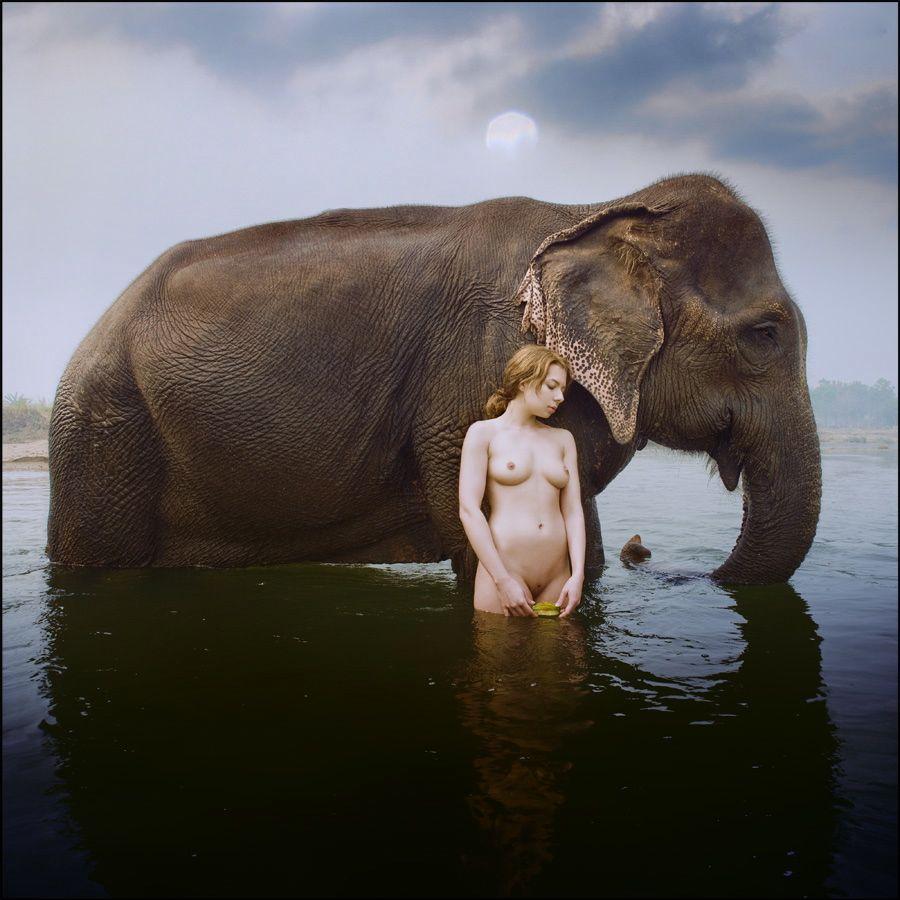 ElephantandNudeBaja