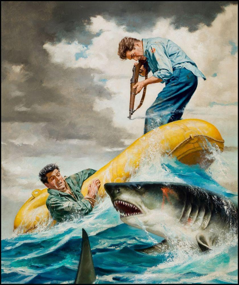 SharkBattleBaja