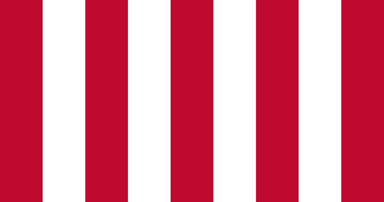 SonsOfLibertyFlag